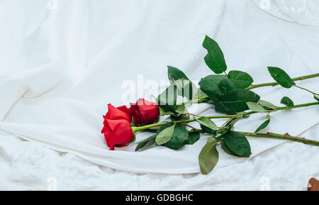 The perfect wedding dress with a full skirt in the room wedding dress hold red rose - Stock Photo