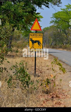 Warning Sign Painted dog, Attention African Wild Dogs, Hwange National Park, near Hwange, Matabeleland North Province, - Stock Photo