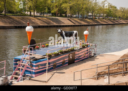 The Full Moo ice cream boat moored on the banks of the River Ouse in York - Stock Photo