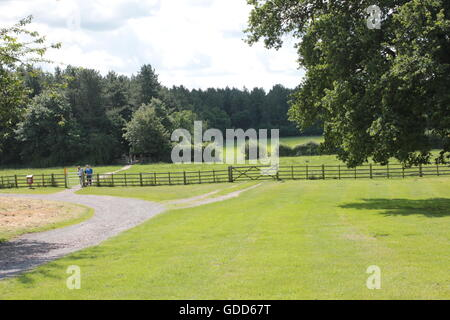 Trees on skyline of Bosworth fields - Stock Photo