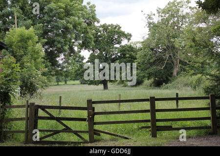 gate and fence, trees on Bosworth battle fields - Stock Photo