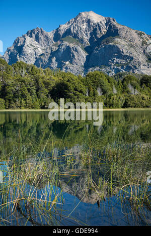 South America,Argentina,Patagonia,Rio Negro,Bariloche,Nahuel Huapi,National Park - Stock Photo