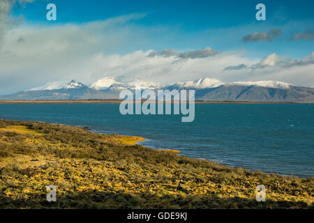 South America,Argentina,Patagonia,Santa Cruz,Puerta Bandera,Lago Argentino - Stock Photo