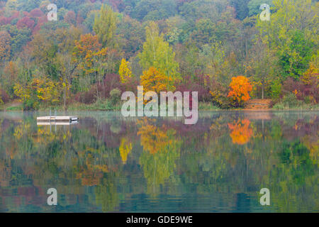 quarry pond,Bavaria,trees,Germany,Europe,water,autumn,autumn scenery,autumnal,autumn wood,deciduous forest,nature,Ne - Stock Photo