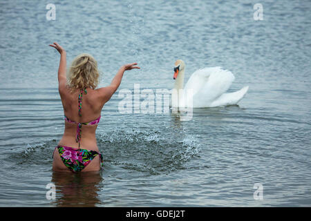 Woman swimming in lake with white swan - Stock Photo