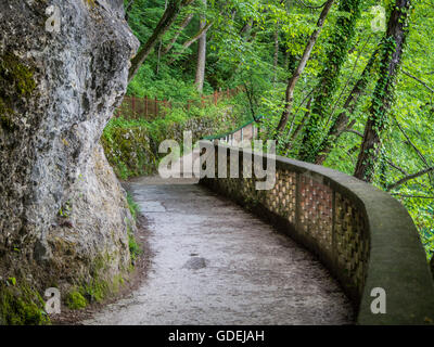 Footpath through the forest, Lake Bled, Slovenia - Stock Photo