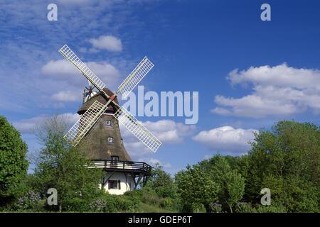 Windmill called Pommerby, Angeln, Schlei, Schleswig-Holstein, Germany - Stock Photo