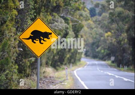Road Sign Tasmanian Devil, Tasmania, Australia - Stock Photo
