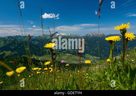 Kanzelwand, Kleinwalsertal Valley, Allgaeu, Vorarlberg, Austria - Stock Photo