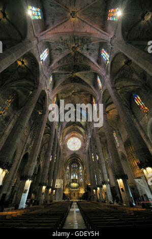 Kathedrale La Seu in Palma de Mallorca , Spain, Mallorca - Stock Photo