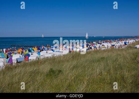 Bukspitze, Buk cape, Baltic resort Kuhlungsborn, Mecklenburg-Western Pomerania, Germany, Kühlungsborn - Stock Photo