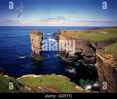 GB - SCOTLAND: Coast at Yesnaby on Mainland Orkney - Stock Photo