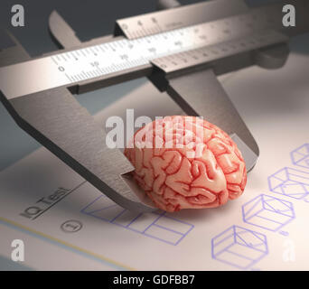 Calliper ruler measuring human brain, illustration. - Stock Photo