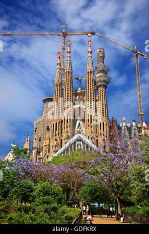 Sagrada familia cathedral architecture masterpiece of for Antoni gaudi sagrada familia architecture