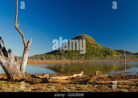 Lake Nuga Nuga with forested conical hill reflected in mirror surface of blue water under blue sky in outback Qld - Stock Photo