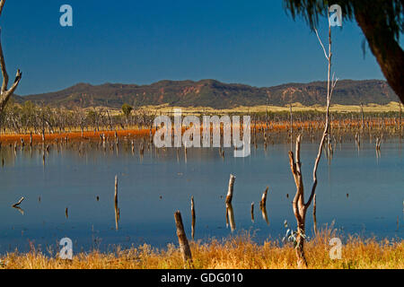 Vast calm blue waters of Lake Nuga Nuga with rugged Carnarvon ranges on horizon under blue sky in outback Qld Australia - Stock Photo