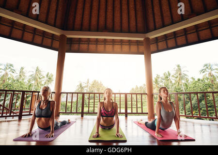 Three women practicing the cobra pose during yoga class at health center. Group of young people doing cobra pose - Stock Photo