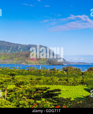 View of Hanalei from overlook off the road - Stock Photo