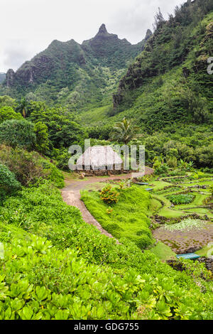 Limahuli Garden and Preserve, National Tropical Botanical Gardens ...