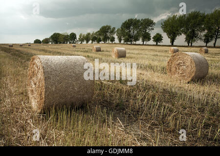 Straw rolls on a field under partly cloudy skies - Stock Photo