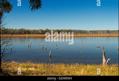 Panoramic view of vast calm blue waters of Lake Nuga Nuga with forests on horizon under blue sky in outback Qld - Stock Photo
