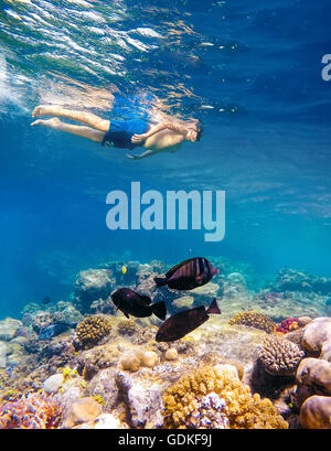 Underwater shoot of a young boy snorkeling and diving in a tropical red sea coral reef with butterfly fish in Egypt - Stock Photo