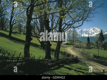 geography / travel, Austria, Salzburg, landscape / landscapes, the Hohe Goell, Berchtesgaden Alps, view from the - Stock Photo
