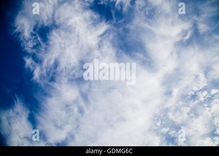 London, UK. 20th July, 2016. Early morning cirrocumulus and fleecy cloud during hot weather in London Credit:  Dinendra - Stock Photo