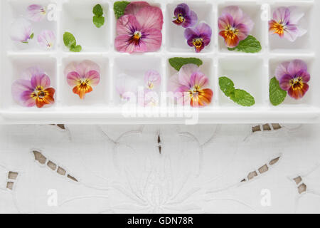 Edible flowers and mint in ice cubes tray on white vintage linen background - Stock Photo