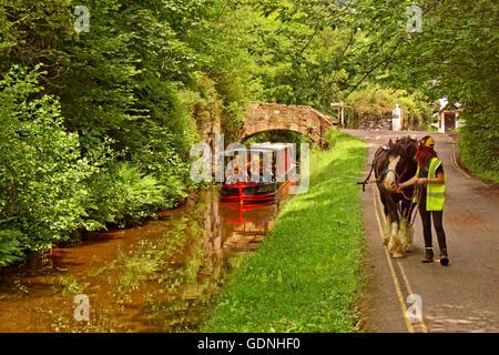 Horse drawn tourism barge on the upper Llangollen Canal near the Horseshoe Falls at Llangollen, Denbighshire, Wales - Stock Photo