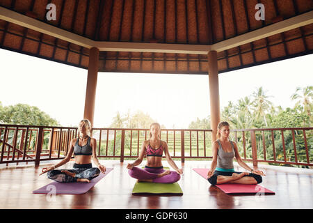 Shot of three young women doing yoga in the class. Fitness people sitting on the exercise mat and relaxing in yoga - Stock Photo