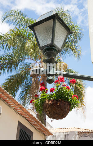European street lamp and hanging basket of flowers - Stock Photo