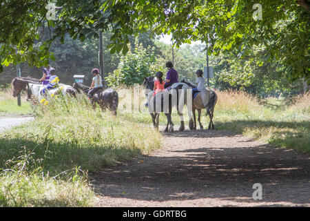 London, UK. 20th July 2016. A group of horse riders  form a local riding school on Wimbledon Common on hot day  - Stock Photo