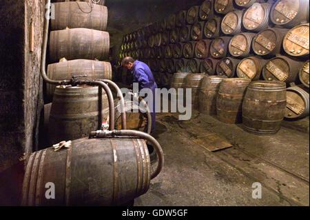 The Lopez De Heredia Winery - Stock Photo