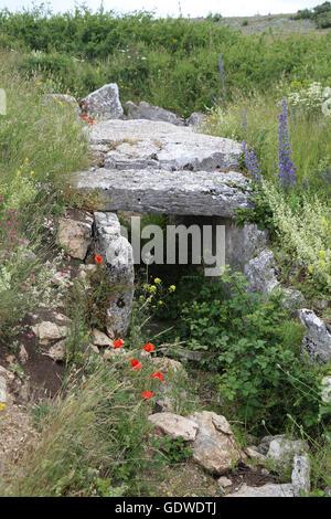 Neolithic. Passage grave. Dolmen of Moreco. Entrance. 3200 a.C. Las Merindades. Burgos. Spain. - Stock Photo
