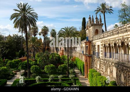 galeria del grutesco in the jardin del estanque of the real alcazar seville