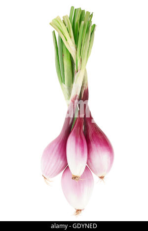 Red onions bunch, Tropea type on white, clipping path - Stock Photo