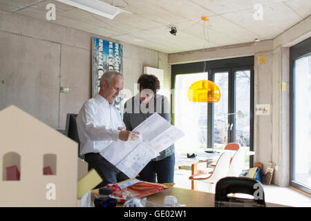 Two Architects discussing about blueprints in the office, Freiburg im Breisgau, Baden-Württemberg, Germany - Stock Photo