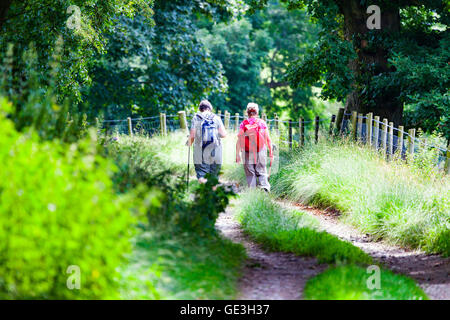 Denbighshire, North Wales, UK 22nd July 2016. UK Weather – Warm weather remains over parts of the UK with temperatures - Stock Photo