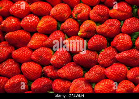 Strawberries, in La Boqueria market, Barcelona. Catalonia, Spain. - Stock Photo