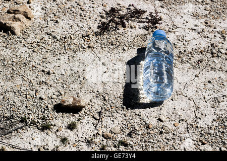 Plastic water bottle on dry and cracked ground. Global warming, ecology concept - Stock Photo