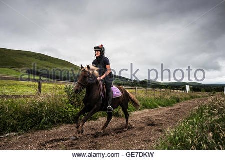 Strip End, Camptown, Jedburgh, Scottish Borders, UK. 22nd July 2016. Horses and ponies enjoy a gallop on the all - Stock Photo