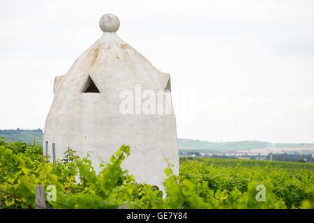 Vineyard shelter in the style of an Italian Trullo in Rheinhessen, Germany, Rhine-Hesse. - Stock Photo