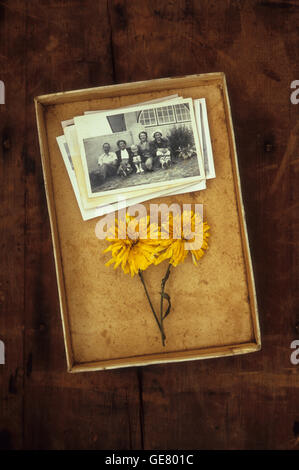 Old box containing stack of vintage black and white family photos and two dried yellow flowers - Stock Photo