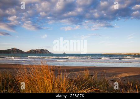 New Zealand, North Island, East Cape Region, Tolaga Bay, beach in the evening light - Stock Photo