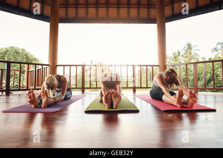 Three women doing yoga together at class, practicing paschimottanasana pose. Fitness females stretching forward - Stock Photo