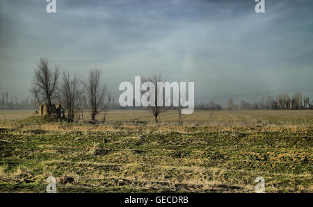 Black earth steppe of Kazakhstan (Central Asia). A field of wheat, fallow after winter. Grassland and remote  kishlak - Stock Photo