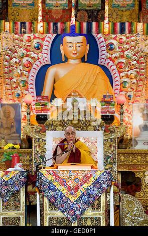 His holiness the Dalai Lama during teachings at Namgyal Monastery,in Tsuglagkhang complex. McLeod Ganj, Dharamsala, - Stock Photo