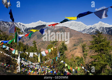 Tibetan prayer flags in Lhagyal Ri, near Tsuglagkhang complex,McLeod Ganj, Dharamsala, Hi - Stock Photo