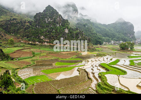 Characteristic landscape with mountains and rice fields in Dong Van, Ha Giang, North Vietnam - Stock Photo
